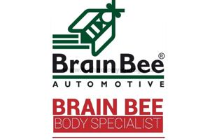 Aktivace Brain Bee BODY SPECIALIST FUNCTION
